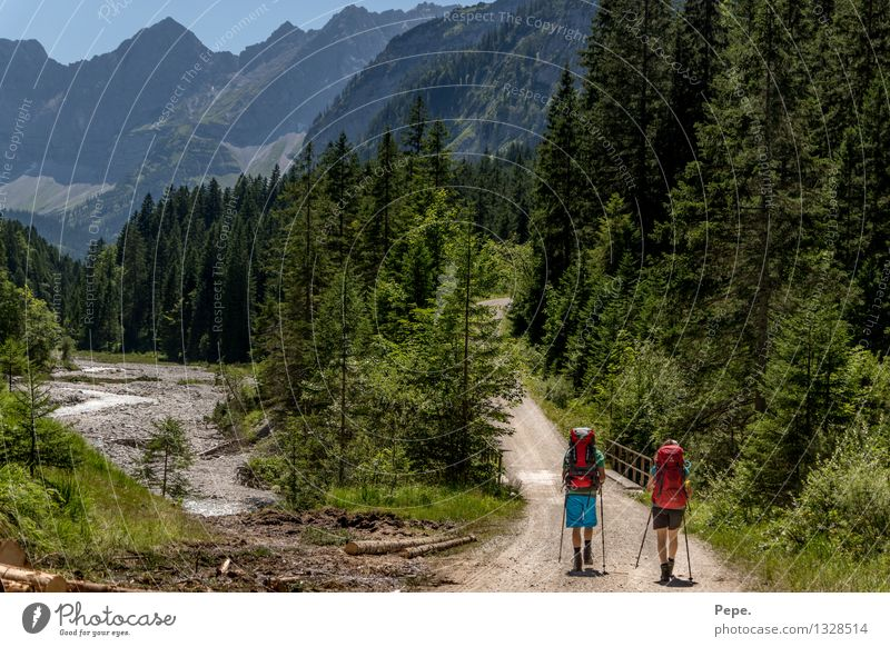 on the way Environment Nature Landscape Cloudless sky Forest Rock Alps Mountain Peak Hiking Green Red In transit Going Backpack Colour photo Panorama (View)