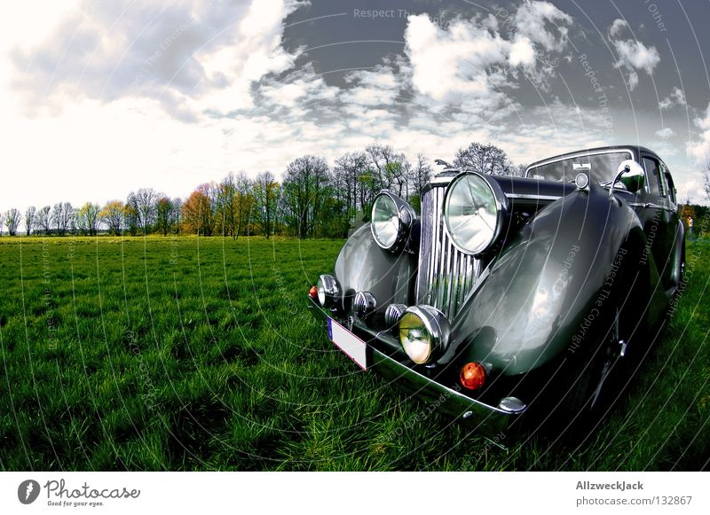 Beautiful Old Sky Meadow Car Design Transport Motor vehicle Past Nostalgia Anonymous Floodlight Vintage car Tasty Twenties Fender