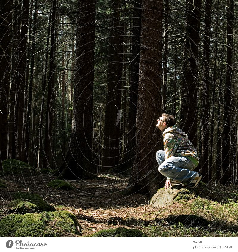 Man Hand Tree Sun Joy Leaf Forest Colour Stone Sit Crazy Cool (slang) Bushes Eyeglasses Jeans Branch