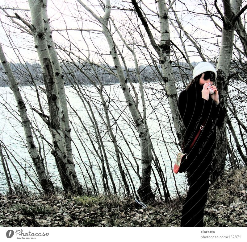 Nature Blue Water Tree Ocean Winter Leaf Loneliness Calm Forest Feminine Freedom Lake Sadness Healthy Leisure and hobbies