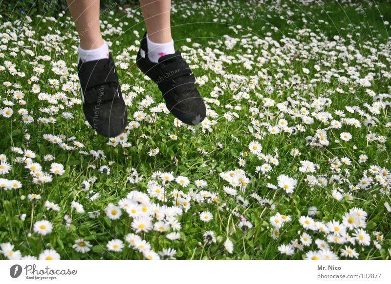 Human being Green White Girl Joy Flower Yellow Meadow Garden Blossom Jump Grass Legs Footwear Flying Lawn