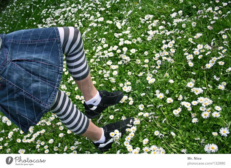 grasshopper Girl Footwear Daisy Meadow Denim skirt Striped Summery Flower Blossom Jump Hop Going Tread White Green Yellow Gymnastics Spring Child Joy