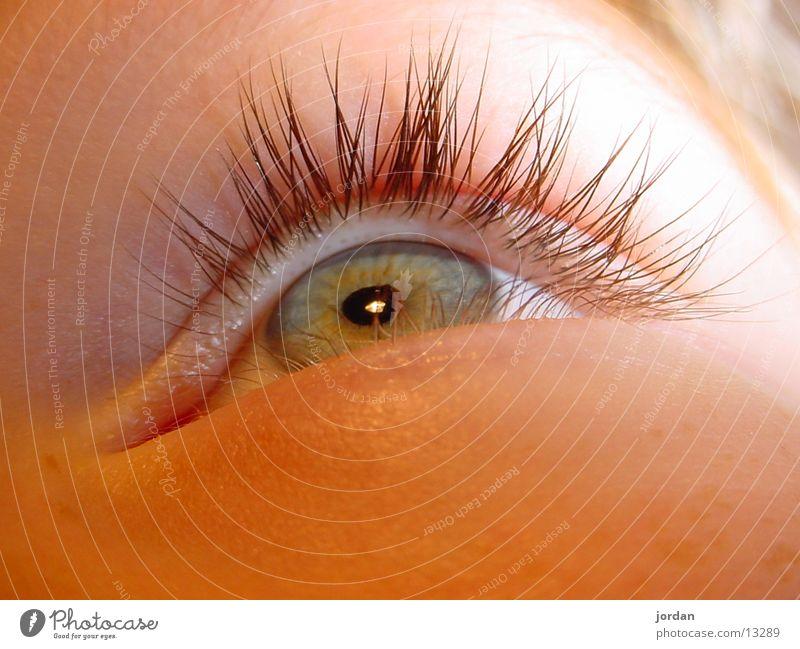 eye very close Human being eye pupil