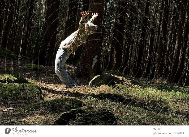 Man Hand Tree Sun Joy Leaf Forest Colour Stone Fear Crazy Cool (slang) Bushes Eyeglasses Jeans Branch