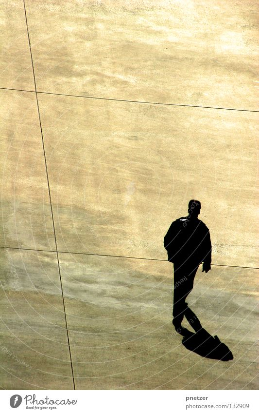 Man White City Black Loneliness Yellow Gray Line Bird Going Walking Modern Perspective Gloomy Simple Asphalt
