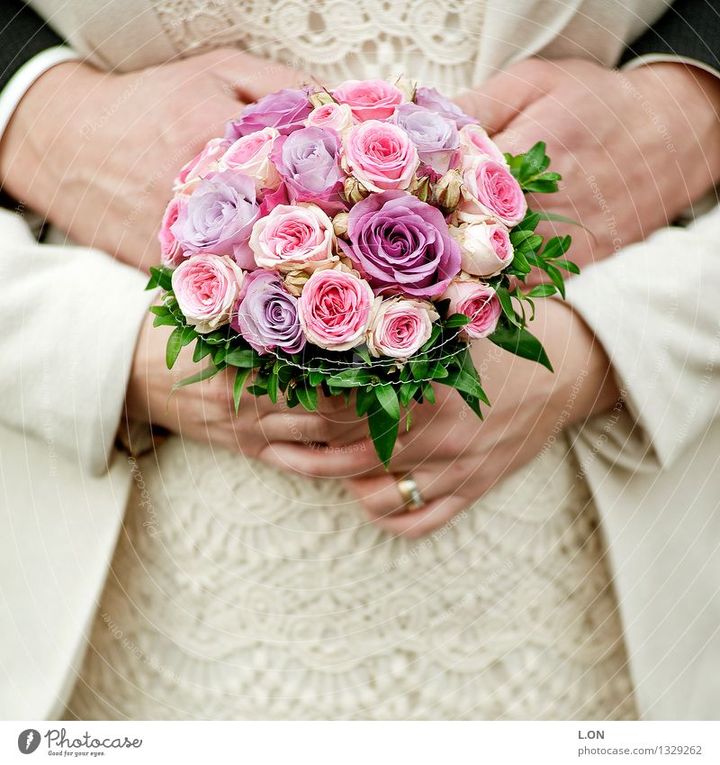 Human being Woman Man Beautiful White Flower Hand Adults Love Emotions Natural Feminine Happy Moody Together Pink