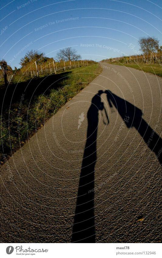 shadow kiss Kissing Asphalt Wine growing Scarf Vine Tree Love Shadow Street Lanes & trails