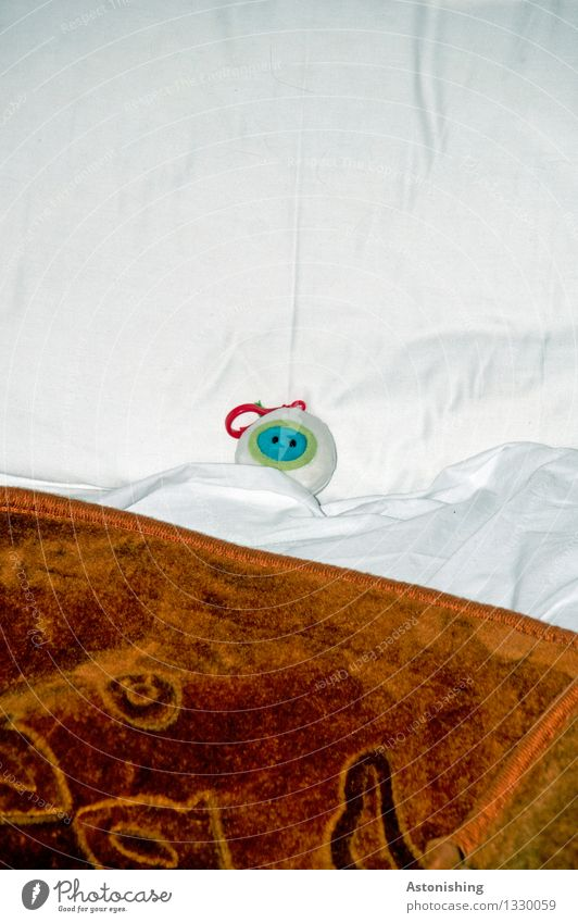 Blue White Animal Small Brown Head Lie Room Sleep Bed Blanket Bedroom Extraterrestrial being Keyring Morocco Cuddly toy