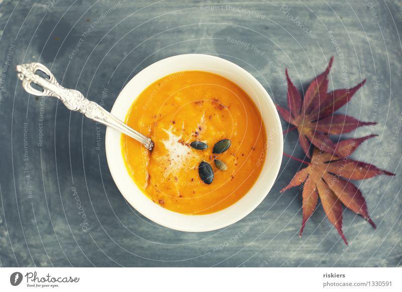 autumn soup Food Vegetable Soup Stew Pumpkin soup Nutrition Lunch Dinner Vegetarian diet Bowl Autumn Leaf Orange Cozy Delicious Colour photo Multicoloured