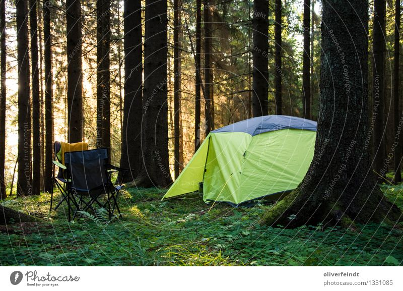 Norway II Harmonious Relaxation Calm Vacation & Travel Trip Adventure Far-off places Freedom Expedition Camping Summer Summer vacation Sun Hiking Environment