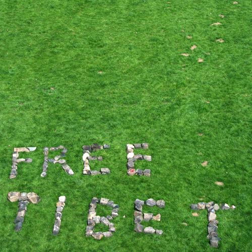s.t. Meadow Grass Tibet Argument China Protest Censorship Freedom Politics and state Asia Stone Cobblestones Llama Dalai torch relay Olympics Dictatorship
