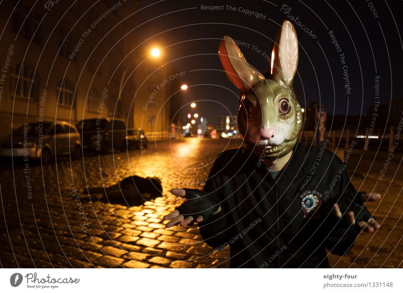 hare killer Human being Masculine Androgynous Young man Youth (Young adults) Man Adults 1 Autumn Winter Rain Town Street Road junction Mask Animal Hunting