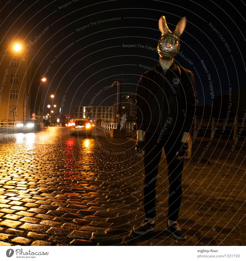 rabbit Human being Masculine Androgynous Young man Youth (Young adults) Man Adults 1 Autumn Winter Rain Town Street Road junction Mask Animal Hunting Threat