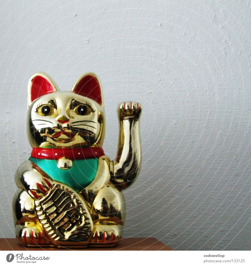 Cat Power Gold Asia China Statue Plastic Holy Wave Domestic cat Temple Snack bar Chinese House of worship Idol