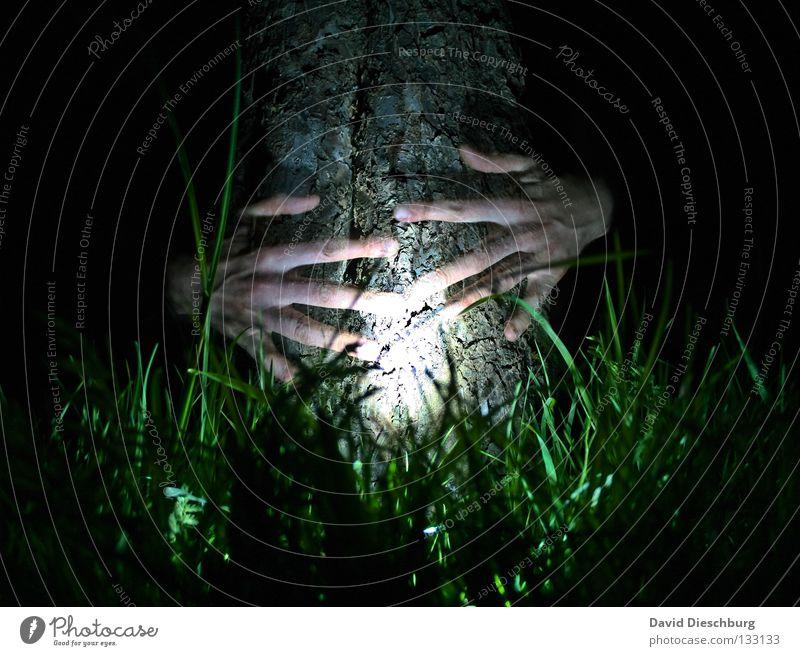 Hand Tree Green Black Lamp Life Dark Meadow Grass Friendship Power Skin Fingers Creepy Tree trunk Transparent