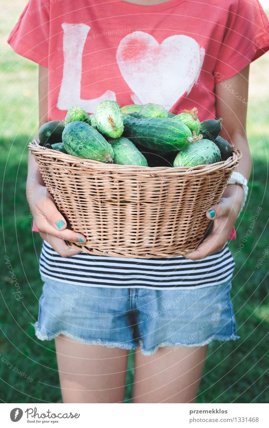 Girl carrying wicker basket with cucumbers Human being Child Green Summer Healthy Eating Natural Garden Lifestyle Fresh Infancy Seasons Vegetable 8 - 13 years