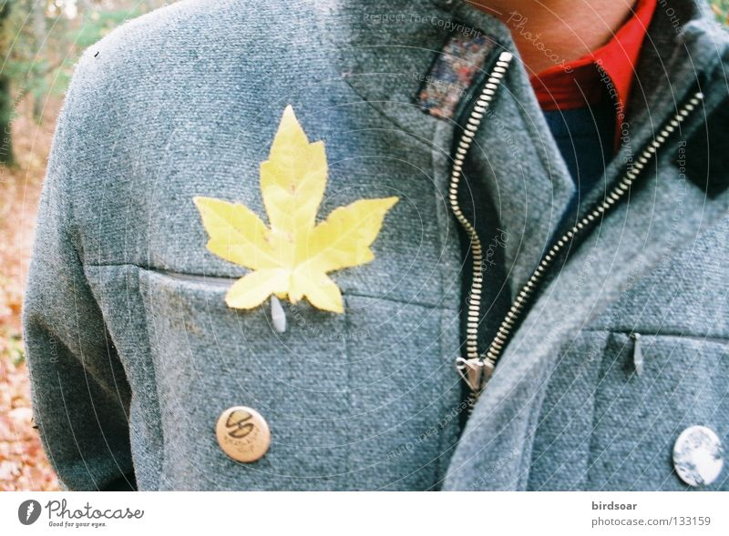 hey, leaf man! I Joy Film industry Autumn Life Breeze Jacket Leaf Dull and trumped through the blustery woods one Gold day.