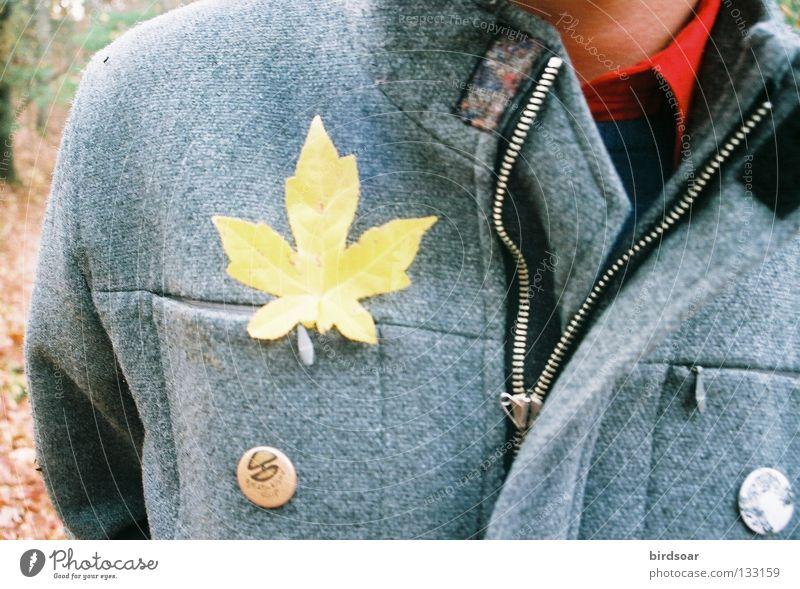 Joy Leaf Life Autumn Gold Film industry Jacket I Dull Breeze