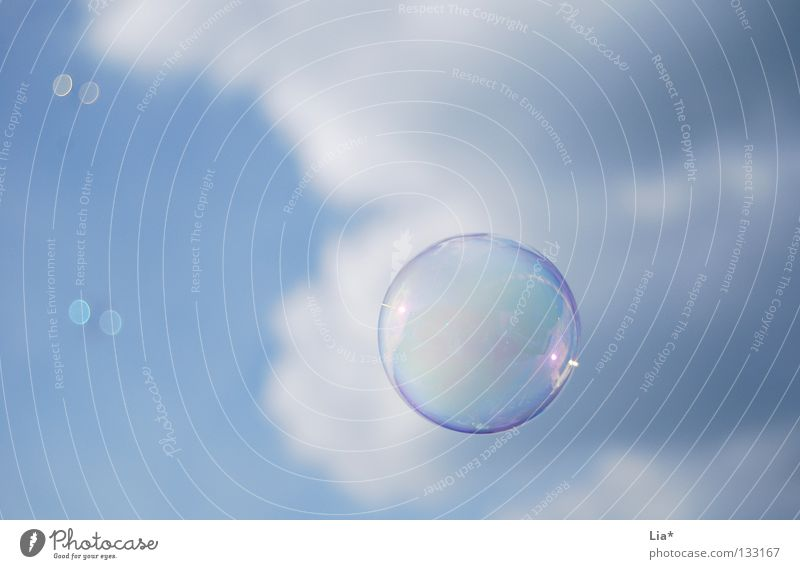 soap bubble Soap bubble Sky blue Blow Clouds Playing Dream Easy Hover Background picture Round Air Airy Joy Peace Flying Senses Free Freedom Weight lightweight