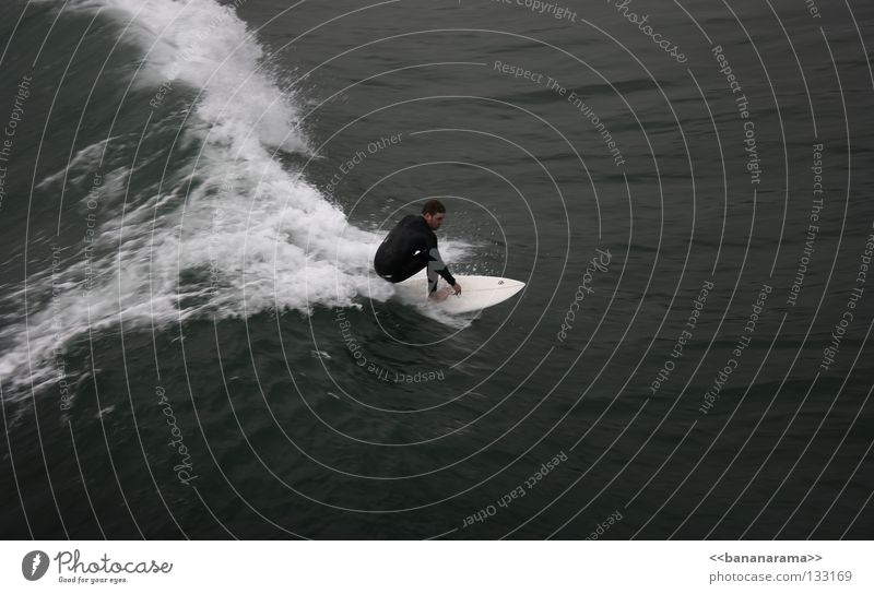 Water Ocean Sports Waves Surfing Surfer Aquatics Funsport Surfboard Extreme sports Whitewater San Diego County