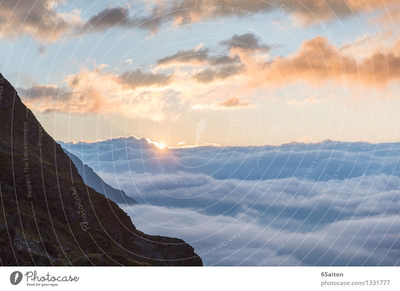 Sun and more sea of clouds Environment Nature Elements Air Water Sky Clouds Sunrise Sunset Summer Climate Weather Beautiful weather Rock Alps Mountain