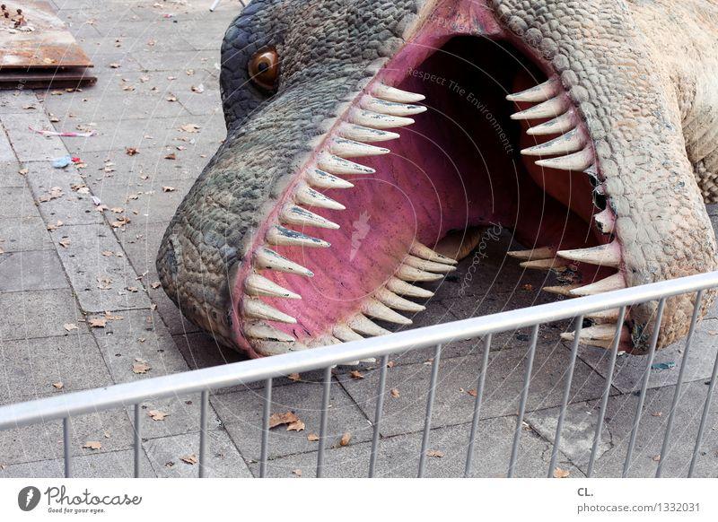 postage / serial death Animal Wild animal Dead animal Animal face Claw Dinosaur 1 Fence Whimsical Colour photo Exterior shot Deserted Day