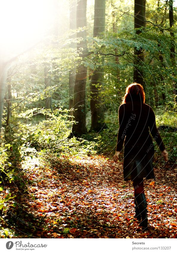stroll Calm Loneliness Light Autumn Safety (feeling of) Trust Thought Play of colours Colour in the wood the way Life Freedom young girl