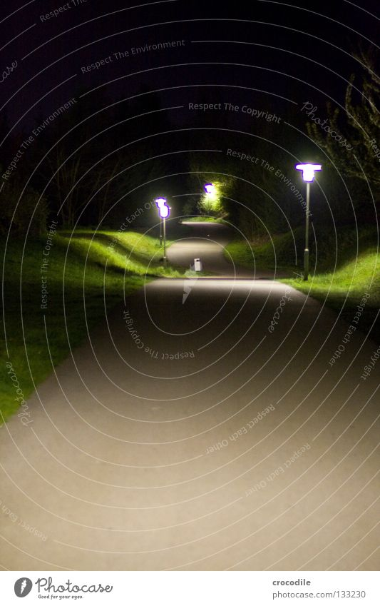Sky Tree Dark Meadow Grass Lanes & trails Bright Lighting Going Dangerous Lantern Eerie