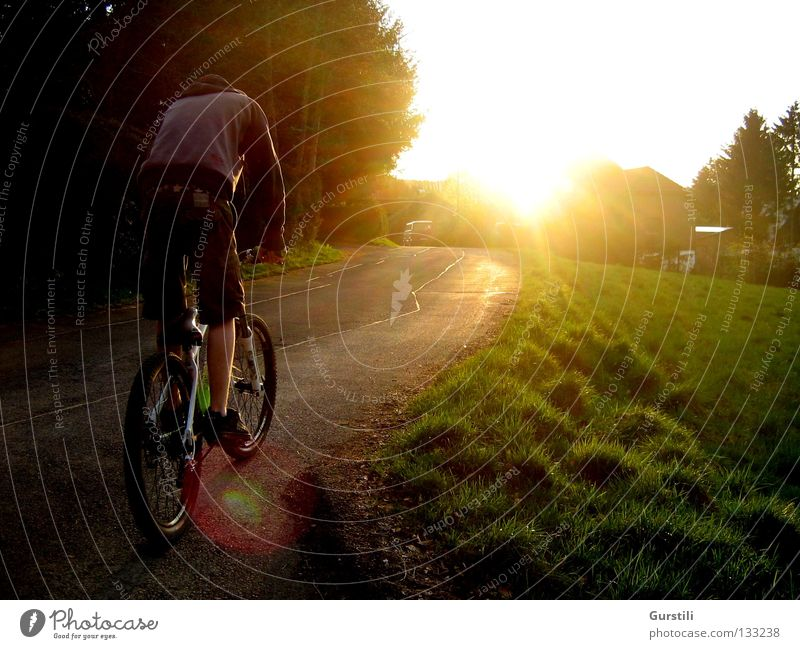 Drive into the evening sun Colour photo Exterior shot Evening Light Sunbeam Playing Cycling Bicycle Nature Sunrise Sunset Summer Beautiful weather Grass Meadow