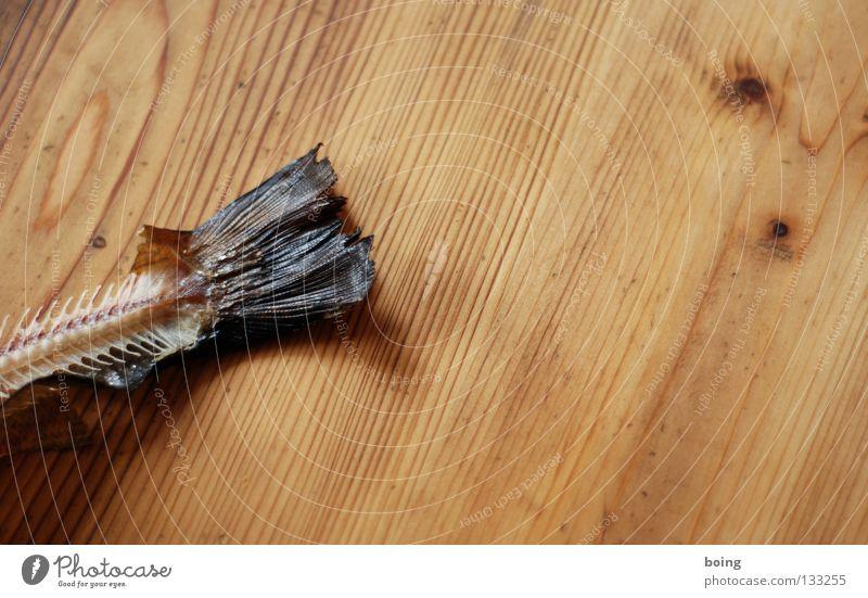 Skin Table Fish Kitchen Fat Meat Tails Barn Water wings Skeleton Fish bone Trout Pork tenderloin