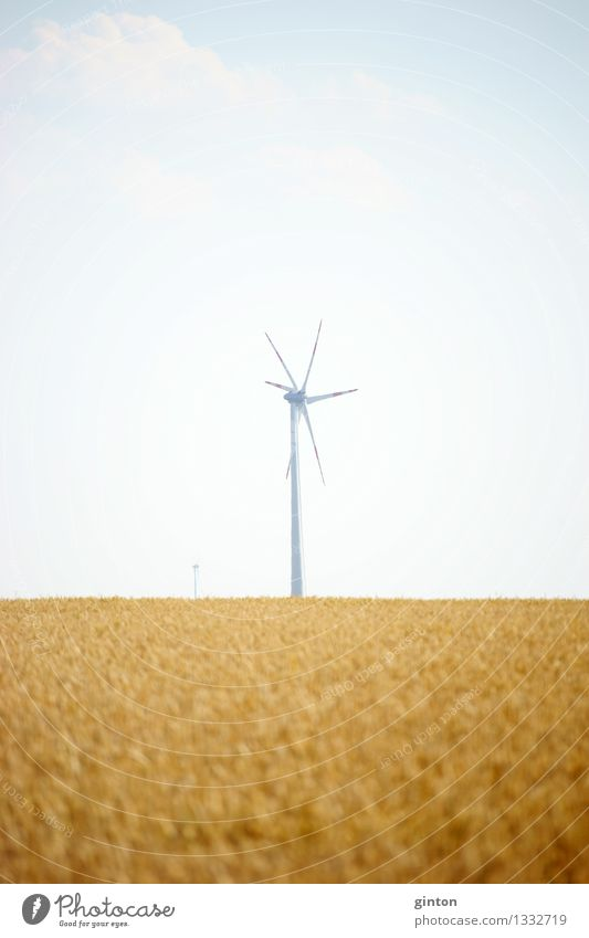 windmill Agriculture Forestry Energy industry Technology Renewable energy Wind energy plant Clouds Field Hot Bright Dry Warmth Industry windmills wind farm