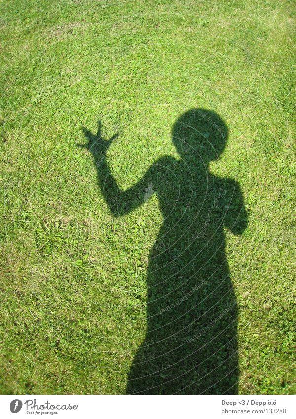 Hand Green Plant Sun Summer Joy Black Meadow Dark Arm Absurdity Knockout Witten
