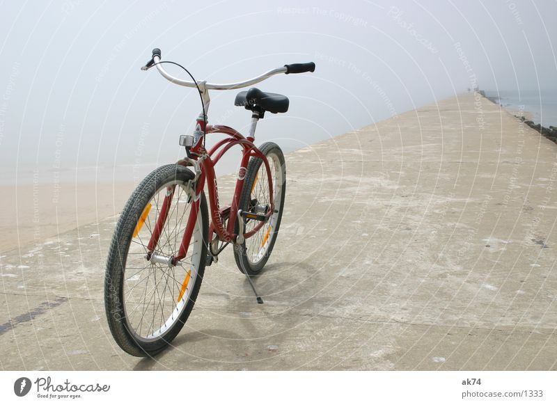 Red Beach Bicycle Transport Tread Cruiser