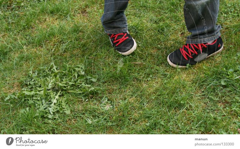Human being Youth (Young adults) White Green Red Black Meadow Grass Garden Footwear Legs Cool (slang) Jeans Dandelion Easygoing Chic