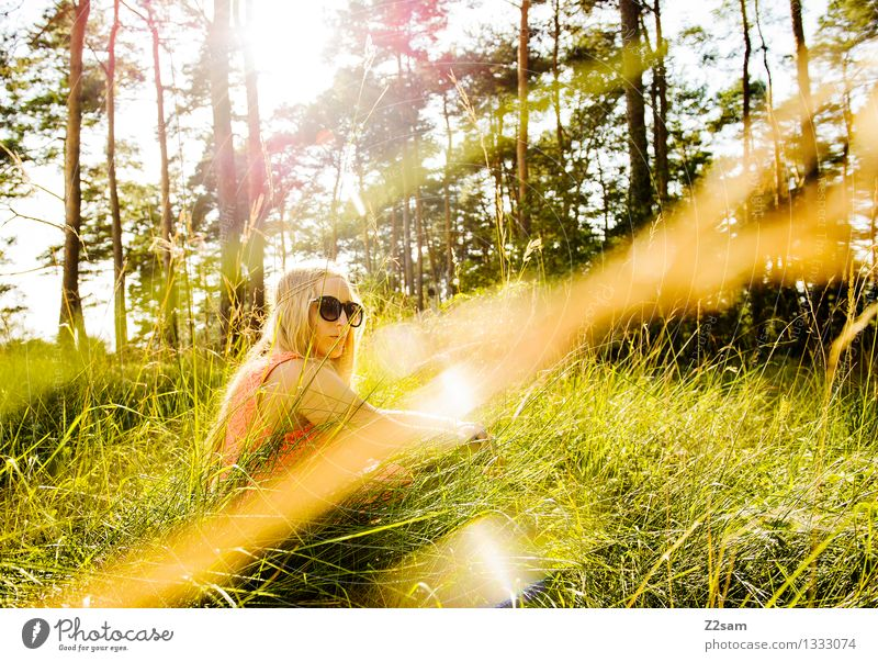 Nature Youth (Young adults) Beautiful Summer Young woman Sun Tree Landscape Relaxation Calm Forest 18 - 30 years Adults Meadow Feminine Style