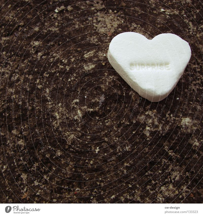 LONELY HEART Candy Heart Heart-shaped White Macro (Extreme close-up) Sweet Love Neutral Background Copy Space bottom Copy Space left Delicious 1 Individual