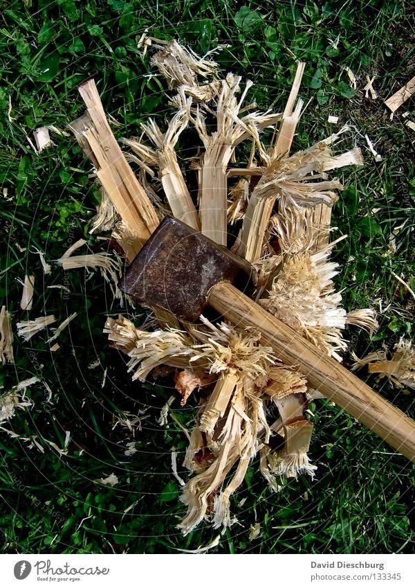 Green Yellow Meadow Garden Wood Brown Power Force Broken Dangerous Lawn Anger Destruction Reaction Beat