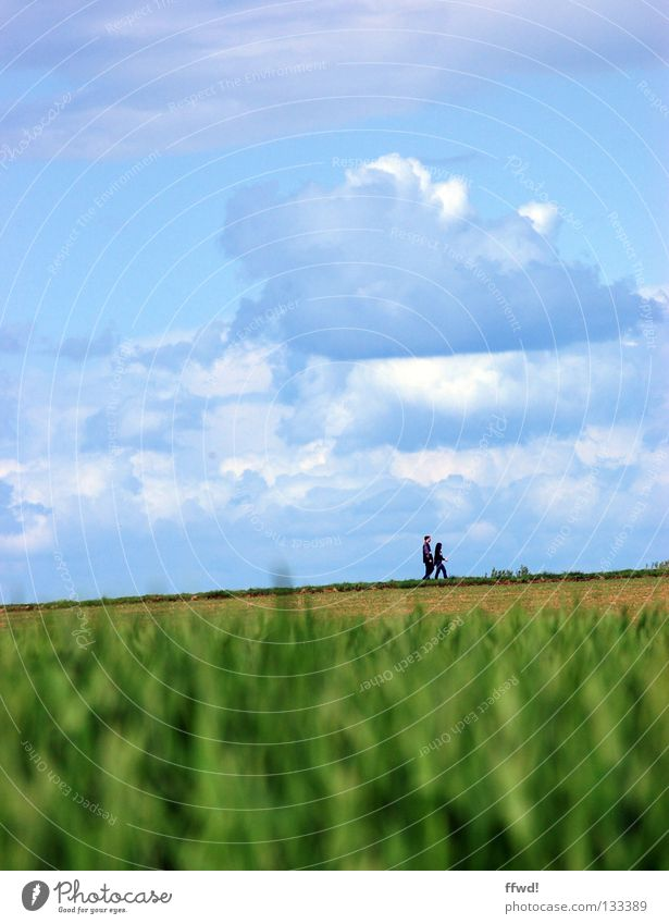 Human being Nature Sky Clouds Loneliness Relaxation Meadow Spring Freedom Couple Lanes & trails Field Hiking Going Weather