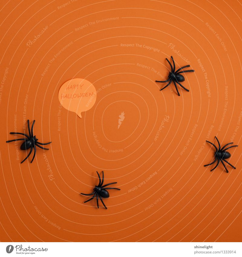 Happy Halloween Event Feasts & Celebrations Hallowe'en Happiness Orange Black Joy Fear Horror Invitation Salutation Card Spider Animal Tradition Creepy