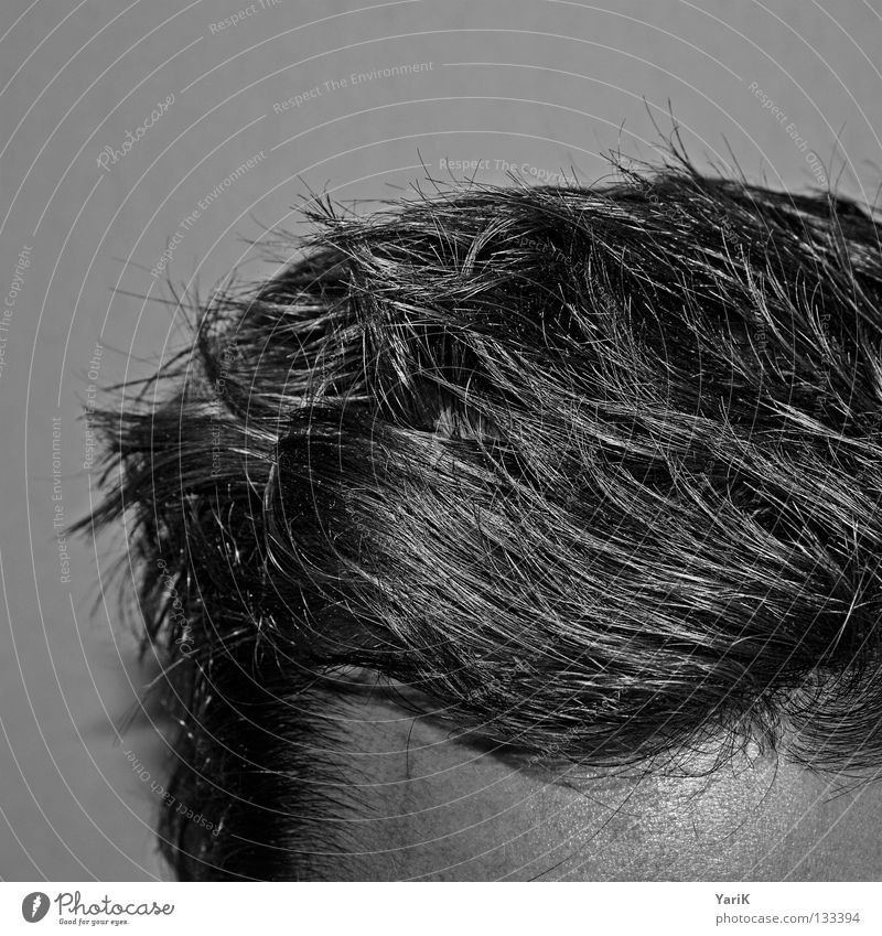 woken Forehead Hair and hairstyles Cut Haircut Man Gray Thin Muddled Hedgehog Morning Arise Wake up Style Hairline Shampoo Black & white photo Head hairy head