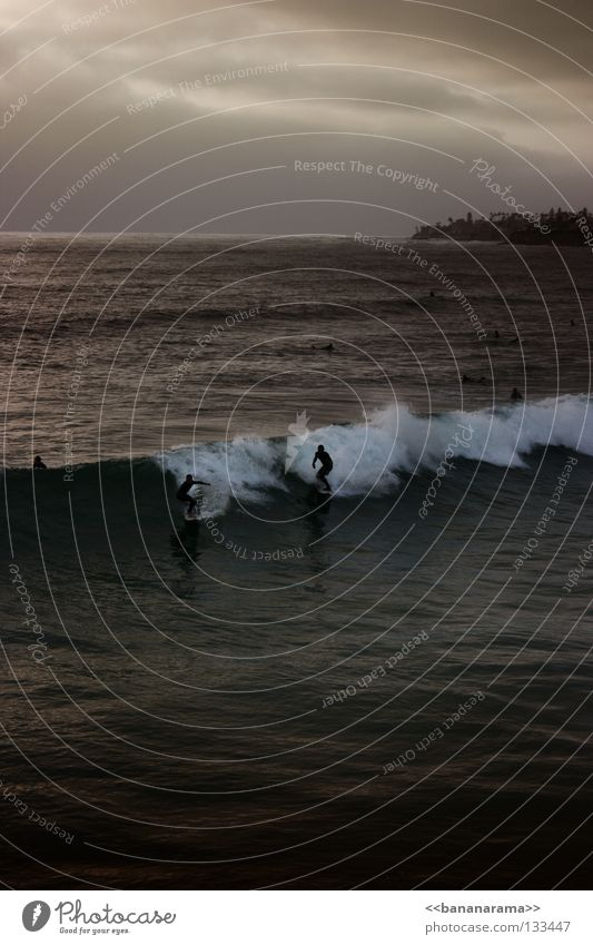 Water Beach Ocean Coast Waves Surfing Surfer Funsport Surfboard Sportsperson San Diego County