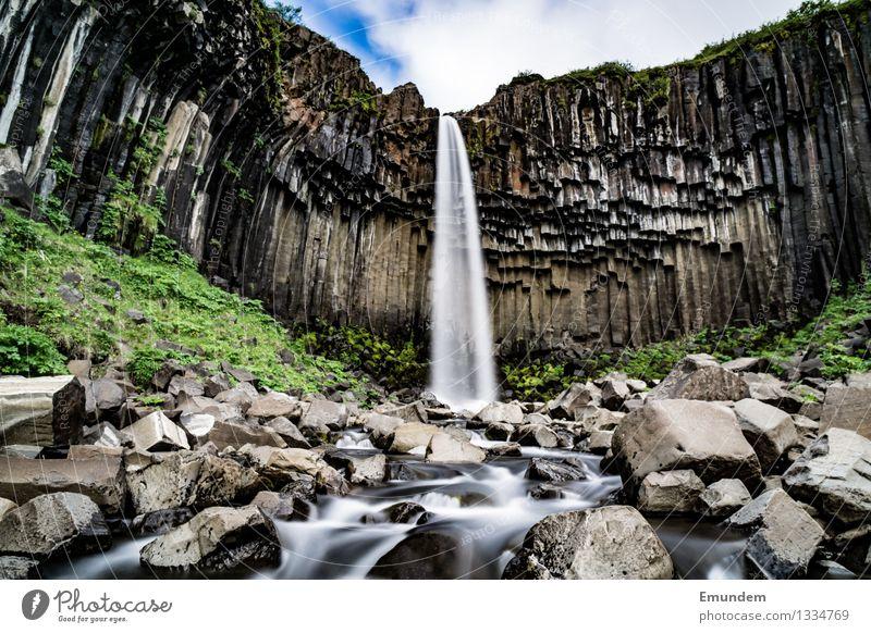 vartifoss Vacation & Travel Tourism Far-off places Sightseeing Waterfall Svartifoss Iceland Natural Wild Basalt Rock volcanic rock Colour photo Exterior shot