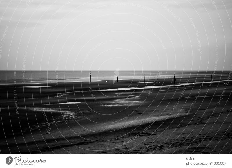 Tristesse of calm Environment Nature Landscape Elements Water Summer Autumn Coast Lakeside North Sea Schleswig-Holstein St. Peter-Ording Infinity Town Wild Gray