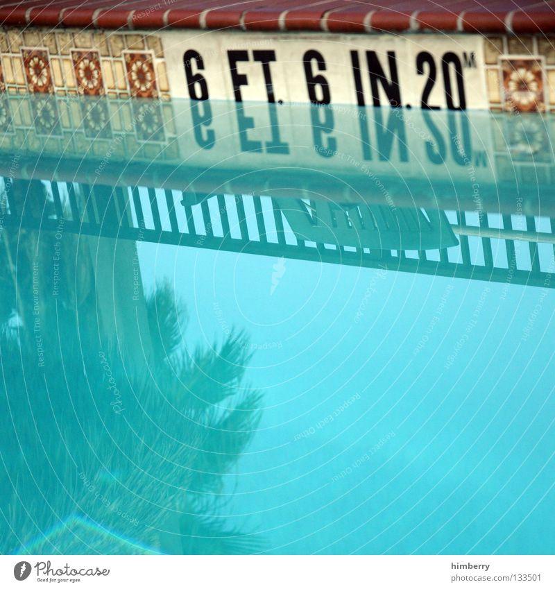 Old Blue Vacation & Travel Playing Swimming & Bathing Retro Swimming pool USA Handrail Tile Deep Turquoise Palm tree Americas Seam Florida