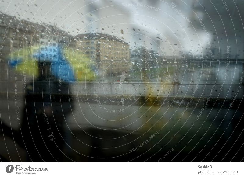 rain man Man Umbrella Yellow Town Rain Window Bad weather Dreary Cold House (Residential Structure) Gray Weather Shadow Blue glass Window pane Rhine Loneliness