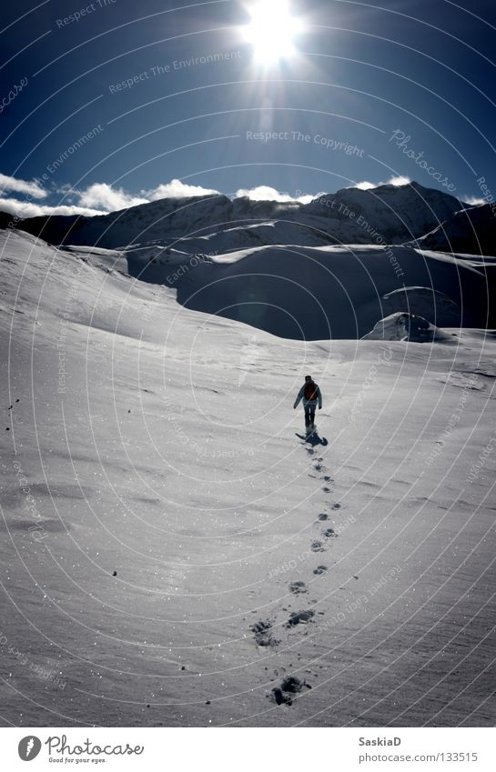 Human being Nature Sun Winter Loneliness Snow Hiking Switzerland Tracks Alps Winter sports Untouched Mountain hiking