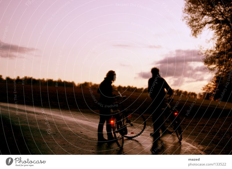 Sky Tree Sun Joy Clouds Calm Relaxation Street Freedom Couple Germany Bicycle Field Safety Break Driving