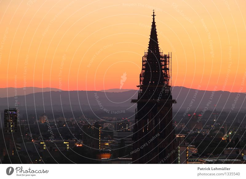 Dusk over Freiburg Tourism City trip Construction site Architecture Environment Landscape Cloudless sky Horizon Summer Beautiful weather Freiburg im Breisgau