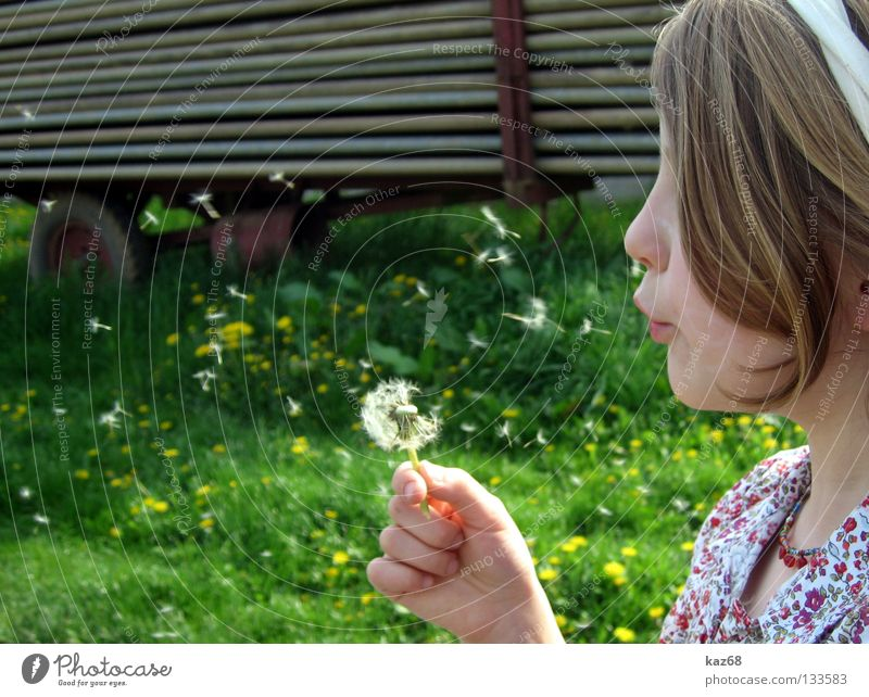 Child Nature Youth (Young adults) Girl White Flower Plant Summer Joy Vacation & Travel Calm Black Colour Dark Relaxation Playing