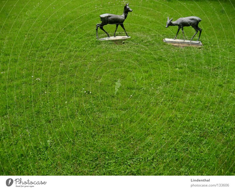 Meadow Rain Metal Statue Wild animal To feed Mammal Motionless Roe deer Bronze Buck